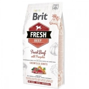 Brit Fresh Beef with Pumpkin Puppy Large, 12kg