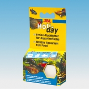 JBL Holiday 33g