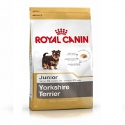 Royal Canin Yorkshire Terrier Junior 1kg / sveriamas
